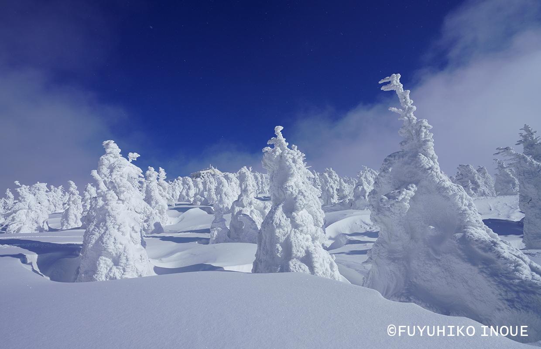 国内の四季 冬